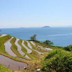 新井の棚田で海と原風景を堪能!アクセス・周辺情報も解説