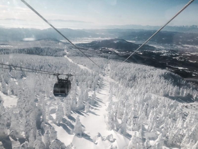 樹氷・ロープウェイ画像