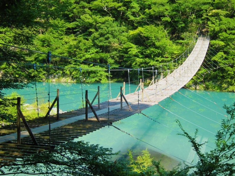 夢の吊り橋全景