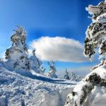 蔵王で感動!樹氷と御釜 ロープウェイやエコーラインでアクセス!