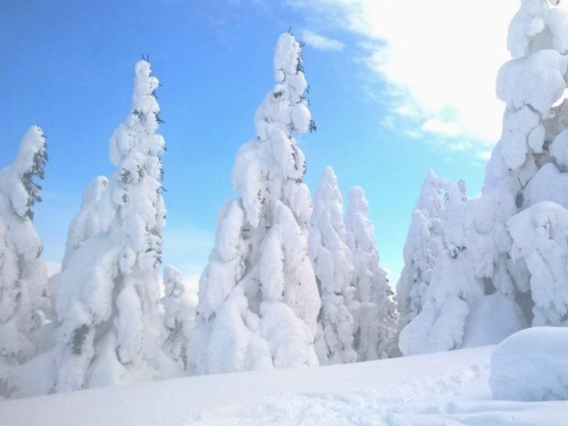 八甲田の快適ロープウェイで季節の空中散歩 登山や周辺ホテル情報