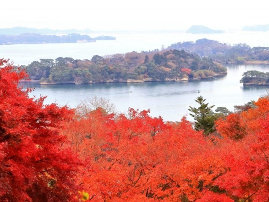 西行戻しの松公園紅葉