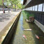 津和野で町歩き観光!アクセス方法やおすすめスポットを徹底解説