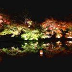 佐賀 御船山楽園で出会う紅葉の夜と朝!春の最高なツツジも見どころ!