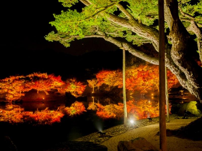 栗林公園紅葉-cover