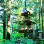 光前寺のしだれ桜・ヒカリゴケ・紅葉の見頃の時期や境内の見所を解説