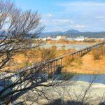 長さ世界一の木造橋!島田市『蓬莱橋』を渡って周辺観光も楽しむ!