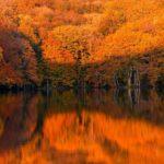 蔦沼(青森県)での紅葉の時期や撮影に最適な時間・条件を詳しく解説