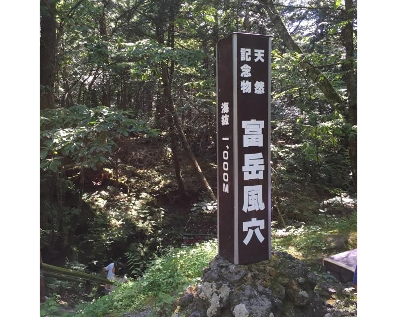 富岳風穴画像