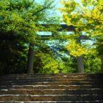 竈門神社の強力縁結は長い歴史から!?お守りやアクセス・駐車場等々
