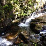 岩屋堂公園でホタル水遊び・桜や紅葉ライトアップの名所は自然の宝庫
