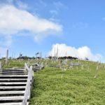 大台ヶ原で絶景登山!詳しいアクセス方法や紅葉などの見どころを紹介