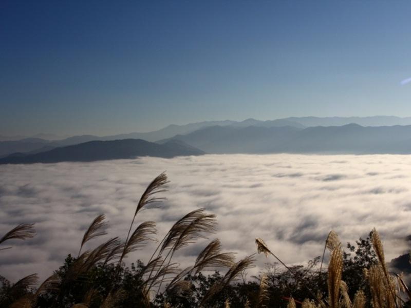 大洲雲海画像