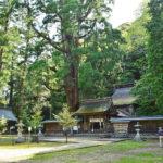 福井 若狭彦神社(上社)若狭姫神社(下社)は強力パワースポット