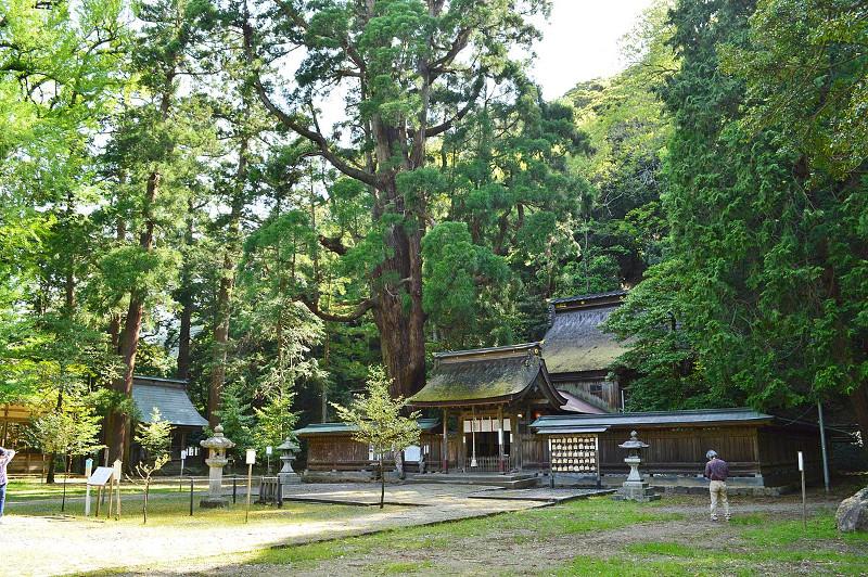 若狭姫神社画像