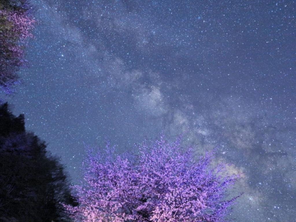 野迫川星空画像