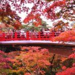 【エリア別】全国紅葉スポット・紅葉見ごろ予想まとめ2019