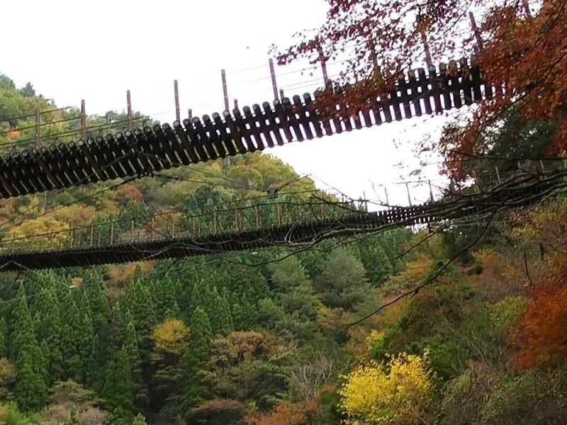 五家荘吊り橋画像