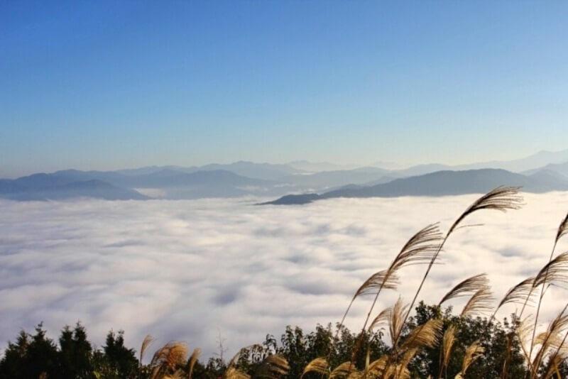 大洲盆地の雲海_light