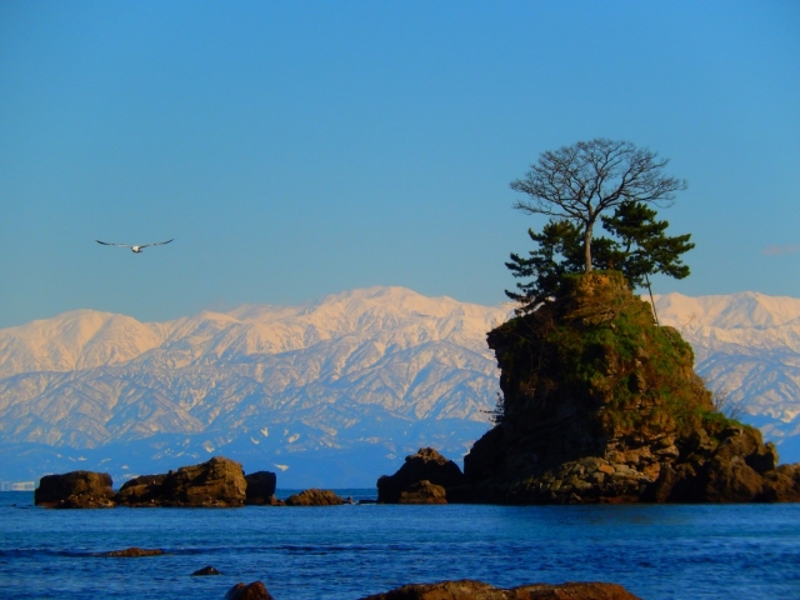 雨晴海岸と立山連峰画像
