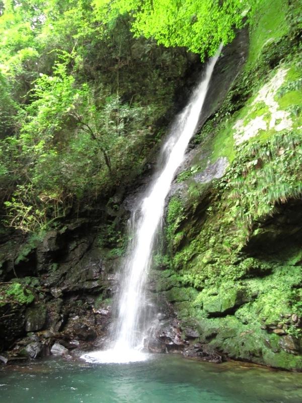 琵琶の滝画像
