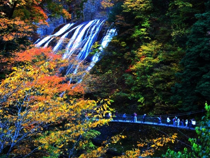 袋田の滝-cover