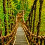 祖谷のかずら橋を渡る!!徳島県三好市のおすすめ秘境観光スポット