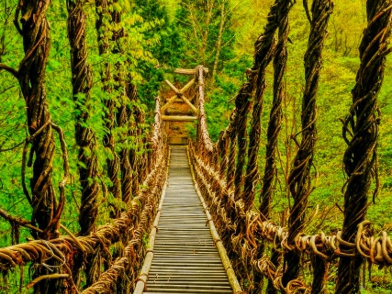 祖谷のかずら橋画像