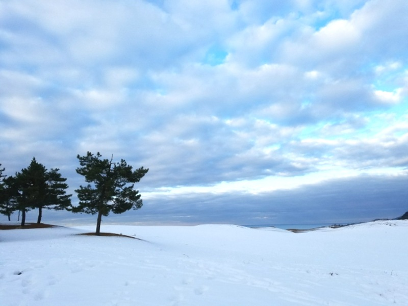 雪の鳥取砂丘画像