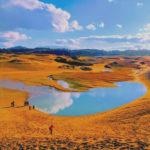 鳥取砂丘をラクダに乗って行く パラグライダー・美術館・白い砂丘
