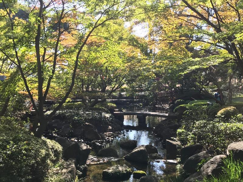 大田黒公園_005