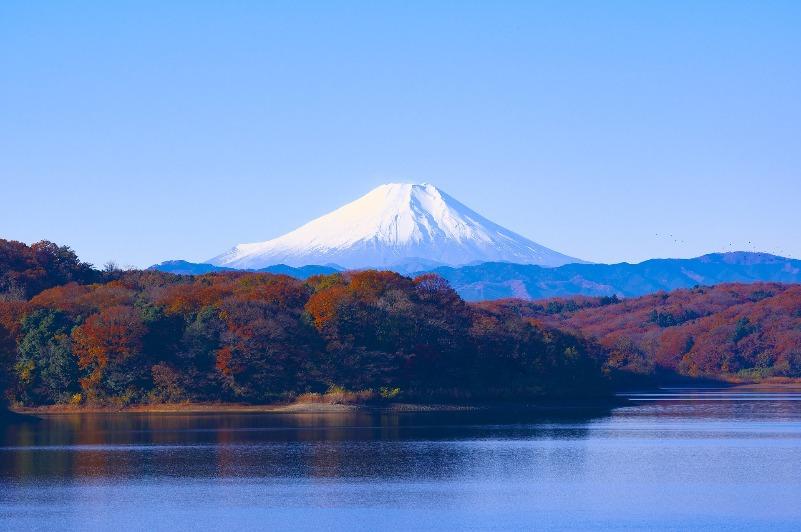 狭山湖_富士山_紅葉