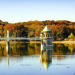 関東の穴場スポット『狭山湖・トトロの森』は遅めの紅葉と桜が楽しめる