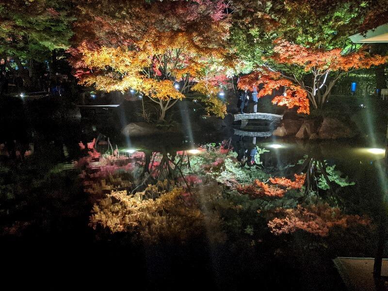 大田黒公園_紅葉ライトアップ_水鏡