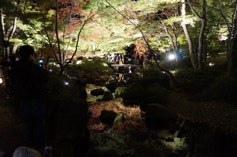 大田黒公園_2018年11月23日_005