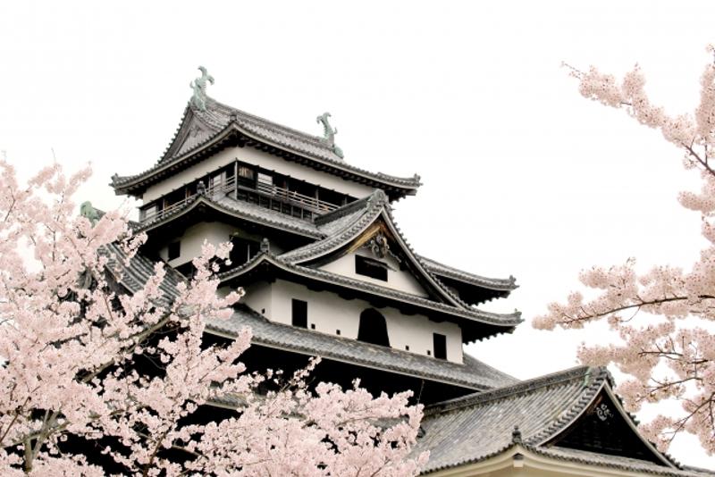 松江城画像