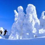 日本三大樹氷!秋田県『森吉山』ゴンドラで行く冬の自然美を鑑賞!