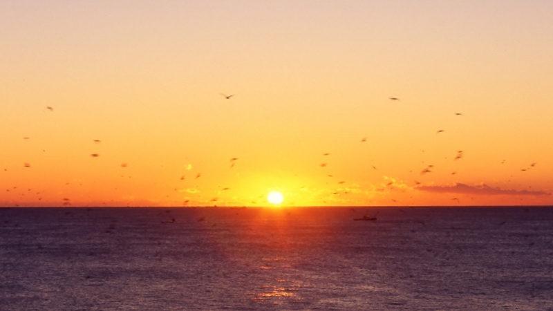 犬吠埼日の出画像