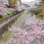 【中止】蹴上インクライン(京都) | 2021年夜桜ライトアップ・見頃情報