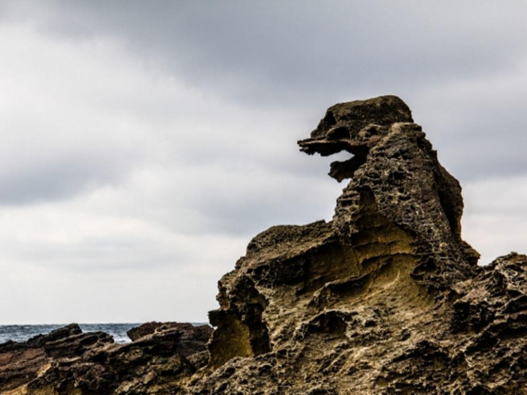 ゴジラ岩画像