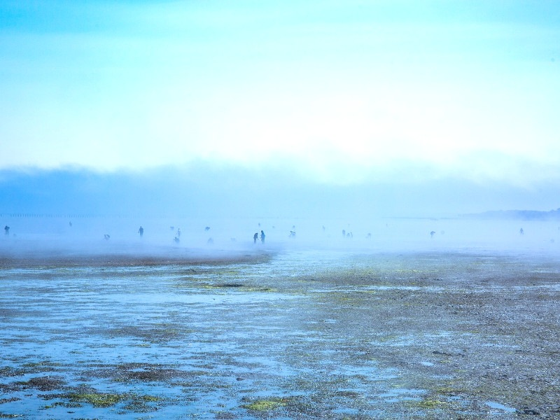 潮干狩りイメージ画