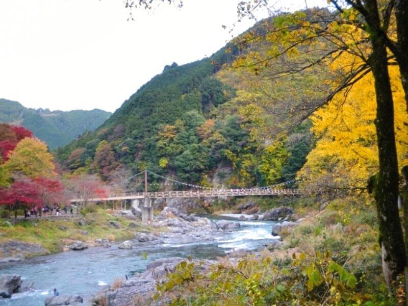 御岳渓谷_紅葉と橋