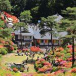 東京都内屈指のツツジの名所『塩船観音寺』はあじさいも楽しめる!