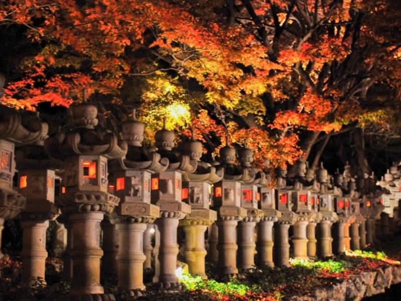 勝尾寺ライトアップ灯籠画像