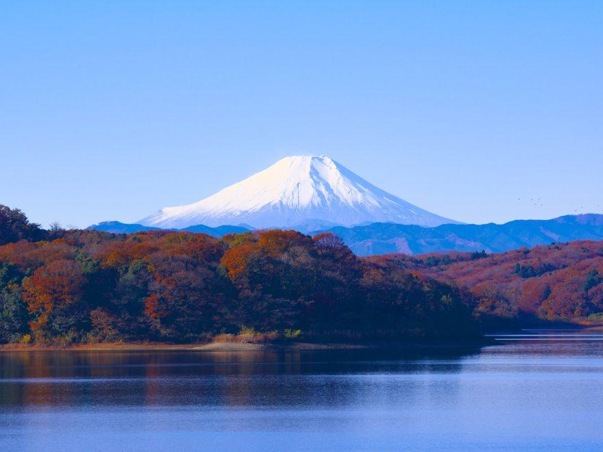 狭山湖_富士山_紅葉_所沢