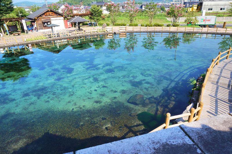 丸池湧水_006