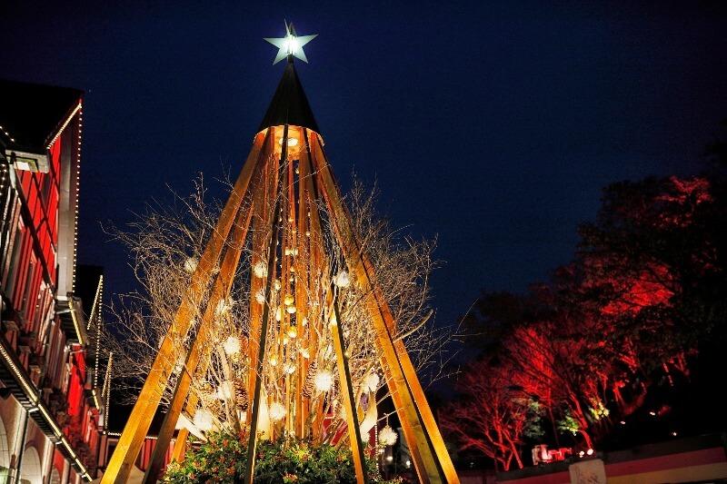神戸布引ハーブ園クリスマスマーケット_クリスマスツリー