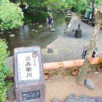 三島を散策!源兵衛川・柿田川の清流スポットを巡る癒しの観光
