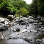 高槻市『摂津峡』は桜から紅葉・水遊び・温泉まで楽しめる!