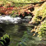 東京の自然観光!「秋川渓谷」周辺はBBQ・川遊び・桜・紅葉スポット
